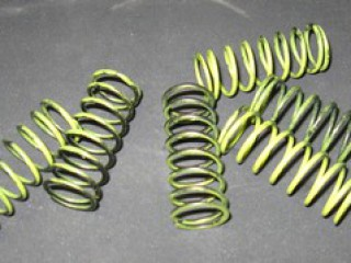 Rotax Racing Valve spring small for Titan valve art 4247 only